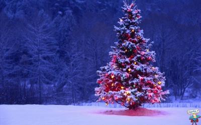 del Natale non ci importa nulla